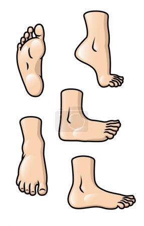 Foot Set