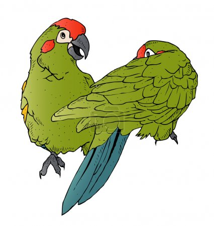 An illustration of a pair of colorful parrots inte...