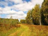 Russian nature at the end of the summer