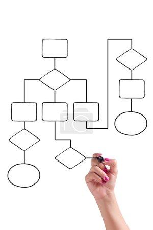 Photo pour Femme d'affaires dessine un organigramme sur le tableau blanc - image libre de droit