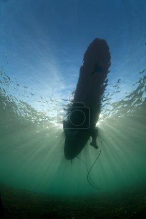 Photo pour Une fille sur le surf. sous l'eau. Indonésie, Bali - image libre de droit