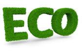 Slovo eco z trávy na bílém pozadí