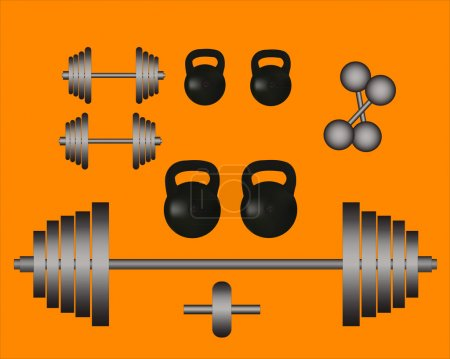weights barbell dumbbell