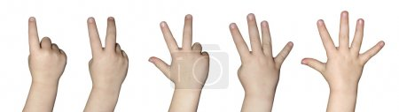 Photo for Kids hand counting one to five - Royalty Free Image
