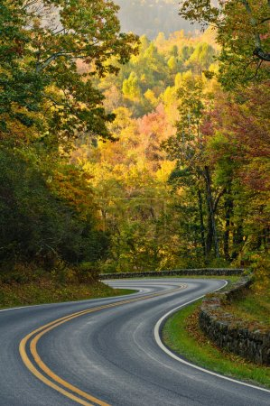 Photo for S-curve road on Skyline Drive, tucked into the blue ridge mountains in Shenandoah National Park, Virgina. - Royalty Free Image