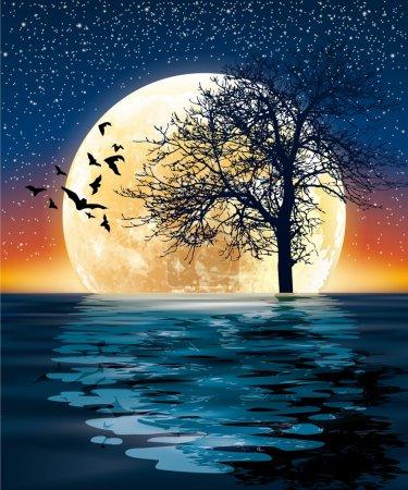 under the starry sky quiet moonlight and surreal scene