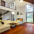 Designer house with entresol and spacious living r...