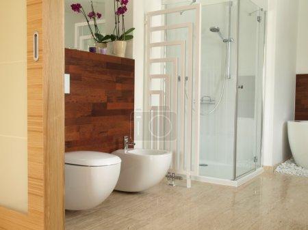 closeup of bidet and toilet