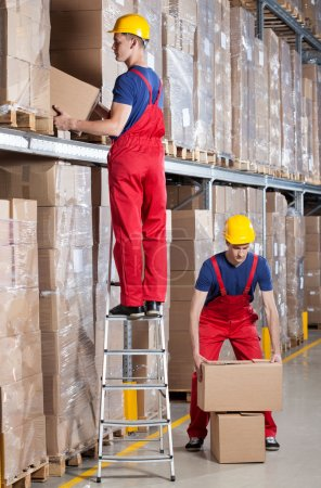 Man working at height in warehouse