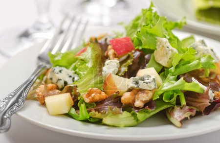 Photo for Waldorf salad with greens, apples, walnuts, and blue cheese. - Royalty Free Image