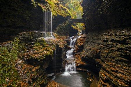 Beautiful waterfall cascade and fall
