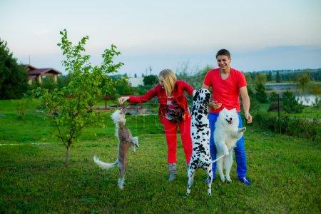 Photo pour Heureux mari et femme avec trois chiens dans un jardin. Dalmatiens, Laïka et Chien chinois à crête - image libre de droit
