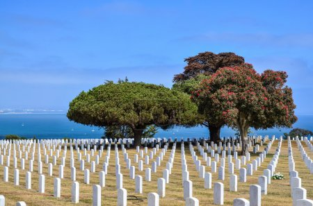 Fort Rosecrans National Cemetery at Point Loma in San Diego, Cal