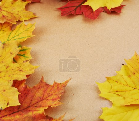 Textured paper covered with leaves