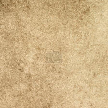 Plush cloth texture fragment