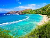 Snorkeling Bay in Oahu,Hawaii