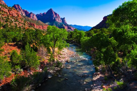 Virgin River Running through Zion National Park,Utah,United States