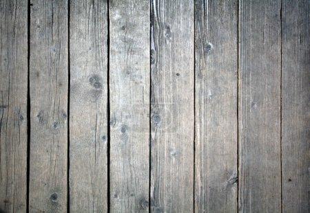 Photo pour Texture Bois - image libre de droit