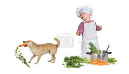 Photo pour Jolie petite fille habillée en chef dans une toque et tablier regardant avec consternation le chien de famille voleur, un Jack Russel terrier, s'échappe avec une carotte dans la bouche - image libre de droit