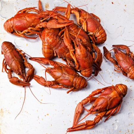 Boiled red lobsters