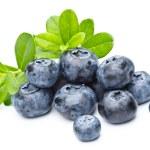 Ripe bilberries on white background...