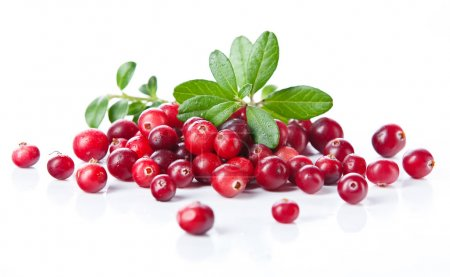 Ripe cranberries with leaves