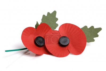 Remembrance sunday poppy