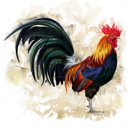 Photo for Rooster digital painting - Royalty Free Image