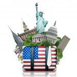 USA, landmarks USA, suitcase and New York travel...