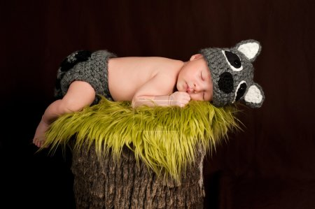Newborn baby boy wearing a gray crocheted raccoon costume and sleeping on a tree stump