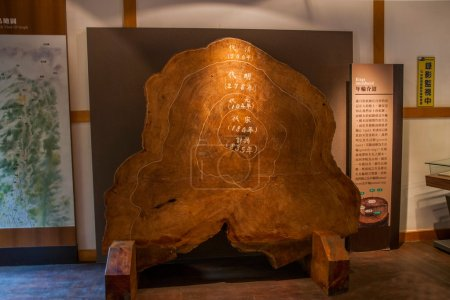 Alishan, Chiayi City, Taiwan red cypress tree museum exhibition intends intent rings