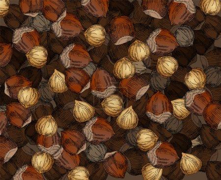 Hand Drawn Walnuts Texture Hazelnuts
