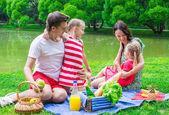 Famiglia felice, pic-nic nel parco