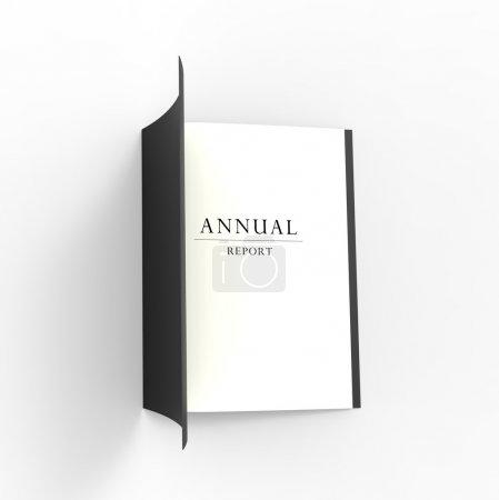 Photo pour Professionnelle rapport annuel à la recherche de business. - image libre de droit