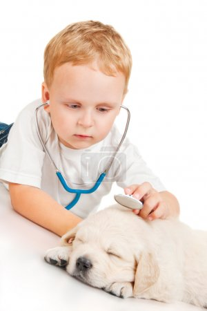 Boy listens to retriever puppy through a stethoscope