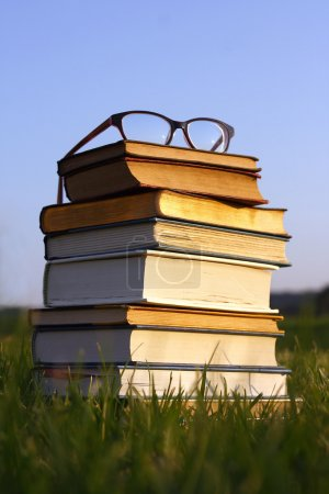 Glasses on Stack of Books Outside