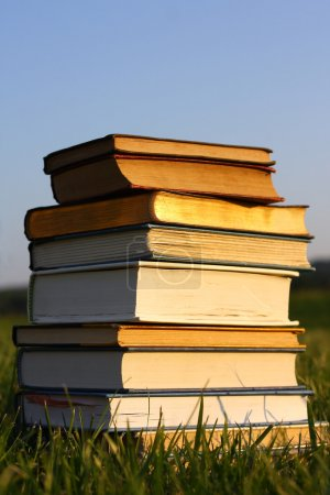 Stack of Old Books Outside