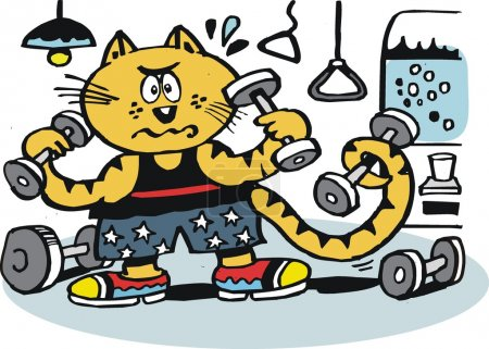 Vector cartoon of cat using weights in gymnasium.