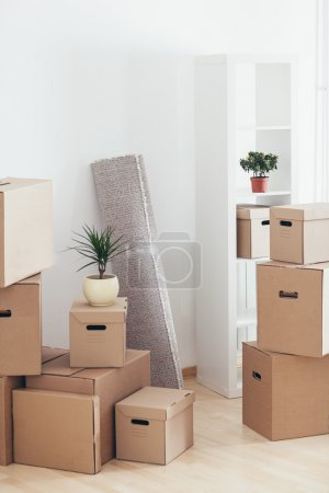 Cardboard Boxes in a New Apartment