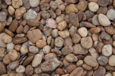 Photo pour Fond de pierre de galets. couleur marron . - image libre de droit