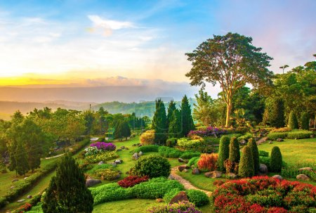 Photo for Beautiful garden of colorful flowers on hill in the morning - Royalty Free Image