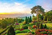 """Постер, картина, фотообои """"красивый сад яркими цветами на холме"""""""
