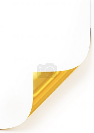 Empty paper sheet with 2 Sided Materials, White and Gold Illustration