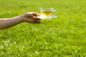 Hand holding cup of tea on sunny day