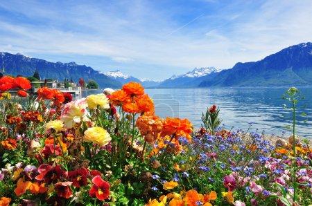 Photo pour Paysage classique suisse - image libre de droit