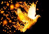 Létající holubice v plamenech