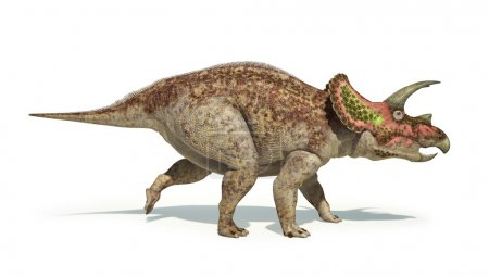 Triceratops dinosaur photorealistic and scientifically correct r