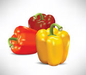 3 Peppers (vector illustration)