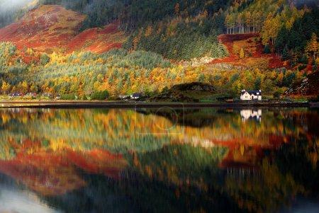 Photo pour Couleurs d'automne dans les highlands, Ecosse, europe - image libre de droit