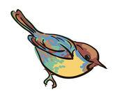 Vector drawing sparrow birds